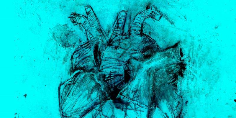 HEART_1800x900.jpg